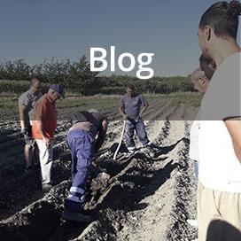 nuevo-banner-blog