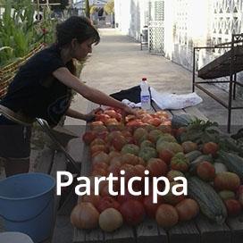 nuevo-banner-participa